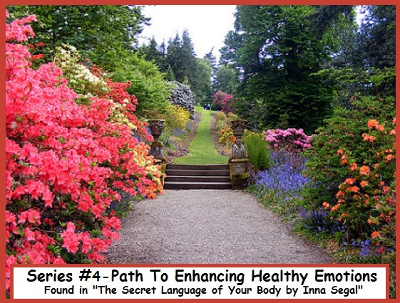Series #4-Path To Enhancing Emotions