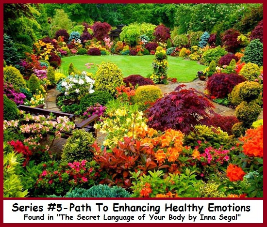 Series #5 - Path To Enhancing Emotions