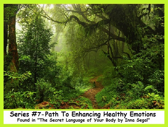 Series #7 - Path to Enhancing Emotions