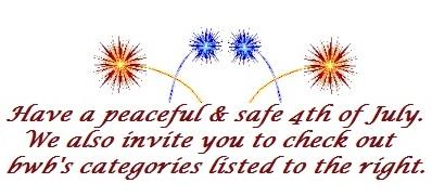 fireworks banner-5